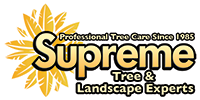 Tree Evaluations, Tree Health Evaluations